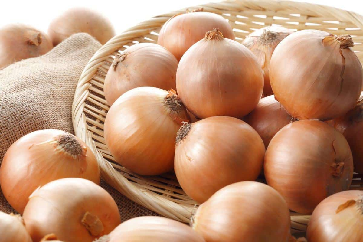 Basket of brown onions.